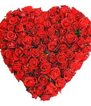 100 Red Roses as Heartshape