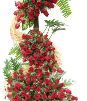 100 Red Roses with Basket