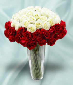 25 White Roses & 25 Red Roses with Vase