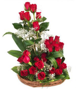 27 Red Roses in Basket